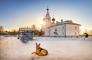 Рыжий сторож монастыря Red guard monastery