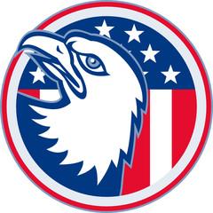 American Eagle Head Circle Retro