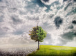 ecology landscape - 76584619