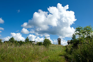 Beautiful rural summer landscape