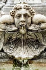 particolari della fontana a piazza della rotonda