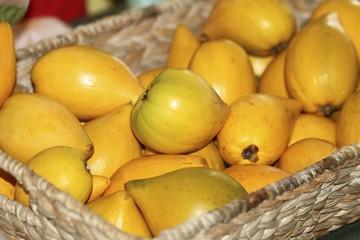 Eggfruit - Canistel Fruit