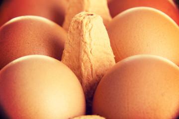 Close up on raw eggs