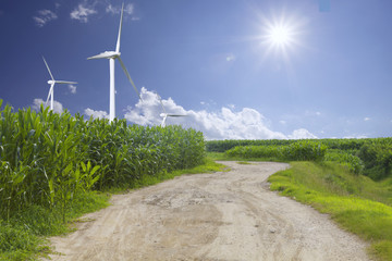 wind energy plant and corn