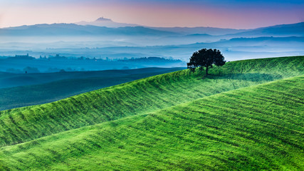 Sunrise of dreamland in Tuscany