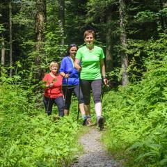 Drei Walkerinnen im Wald