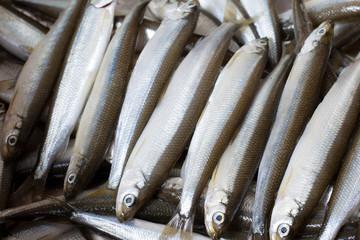 Fresh fish smelt