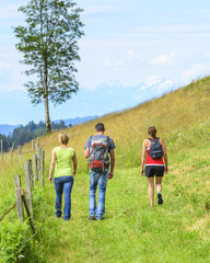 Wanderung im Grünen