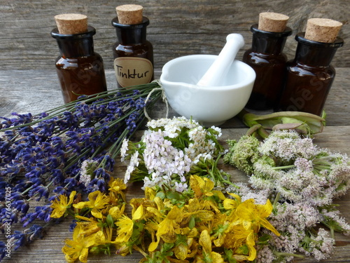 In de dag Lavendel Kräuter