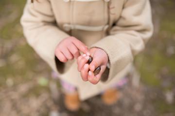 どんぐりを持つ子供の手