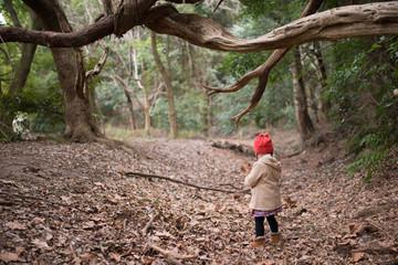 森を歩く少女