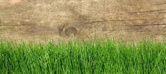 grass on wood