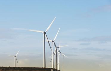windmills near rotterdam