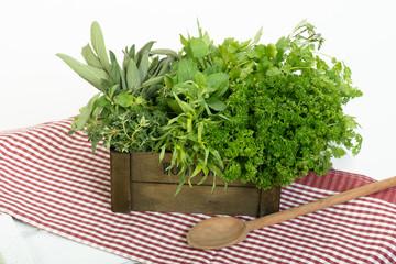 Kräuterbox mit Kochlöffel