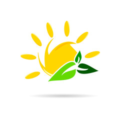 sun icon with leaf color vector