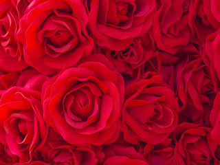 the artificial red rose texture pattern