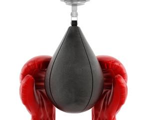 Boxing gloves and punchbag