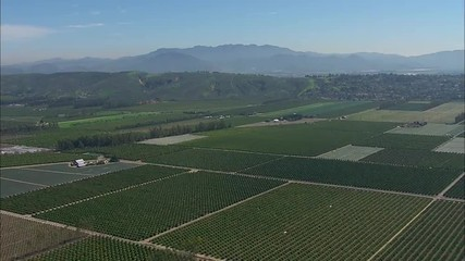 Santa Rosa California Farmland Agriculture