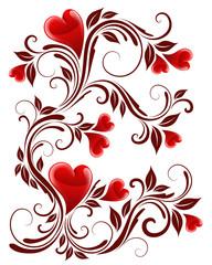Hearts plant