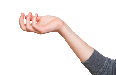 perplexity - hand gesture with cupped palm