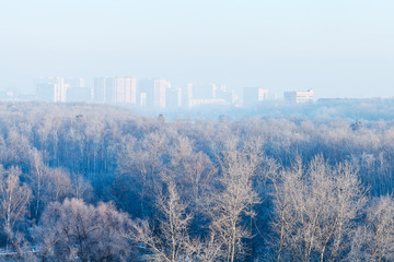 early morning over forest and town in winter