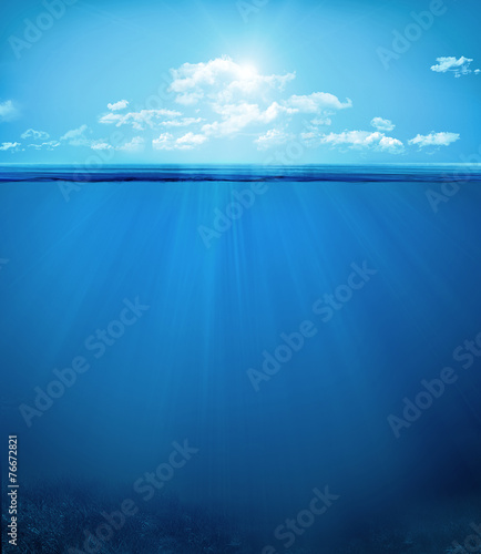 tropical underwater scene - 76672821