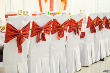 Row of wedding chairs decorated