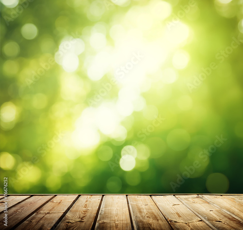 wooden surface in forest