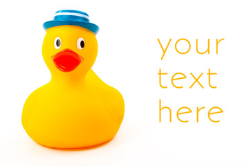 Rubber toy Duck with blue hat isolated on white background