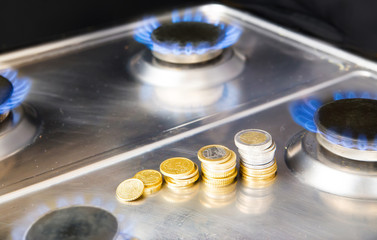 Blue flames of natural gas burning from a gas stove with euro co