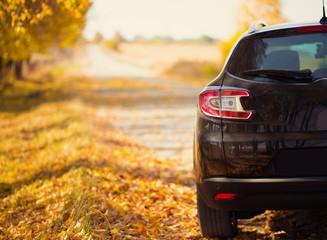 The car on the nature near autumn park