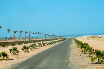 desert road in the red sea region, egypt