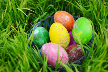 Easter Eggs with Fresh Green Grass over white background