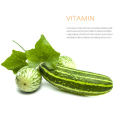 fresh vitamin from vegetables, cucumber, gourd, eggplant on whit