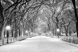 Fototapety Central Park, NY covered in snow at dawn