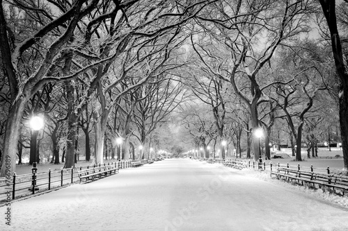 Foto Spatwand New York Central Park, NY covered in snow at dawn