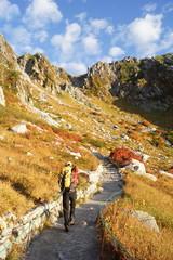 紅葉の千畳敷からの登山