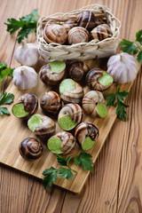Bourguignonne snail au gratin, rustic wooden background