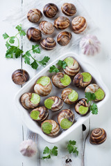 Snails with garlic butter and herbs, white wooden background