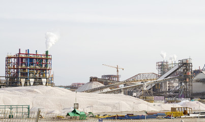 The Dead Sea Works is an Israeli potash plant in Sdom .