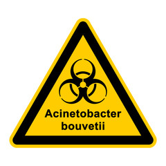 wso127 WarnSchildOrange - acinetobacter bouvetii - g3052