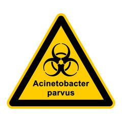 wso129 WarnSchildOrange - acinetobacter parvus - g3054