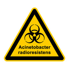 wso130 WarnSchildOrange - acinetobacter radioresistens - g3055
