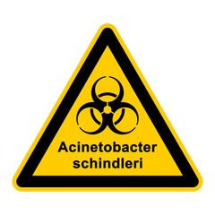 wso131 WarnSchildOrange - acinetobacter schindleri - g3056