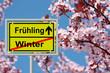 Obrazy na płótnie, fototapety, zdjęcia, fotoobrazy drukowane : Frühlingserwachen