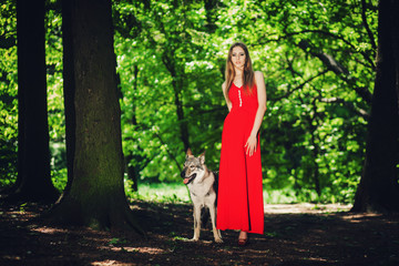 Portrait fashionable girl in dress with a wolf-dog.