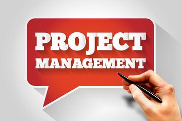 Project Management message bubble, business concept