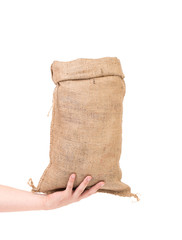 Hand holds bag with banknotes.