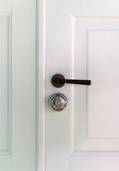 Close-up view of white wooden door with handle.