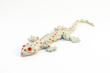 Gecko toy with isolated background
